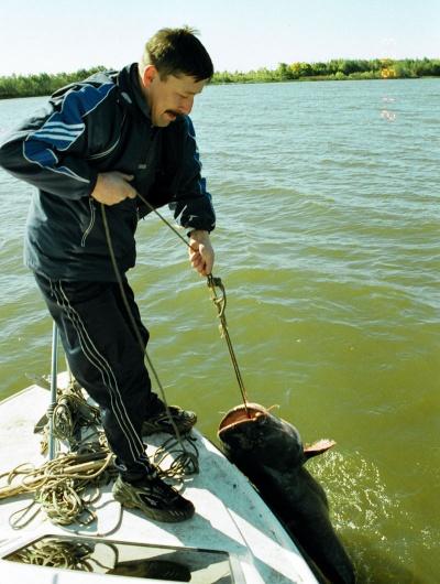 рыболовный форум подольска