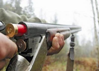 Размышления об охотничьих ружьях